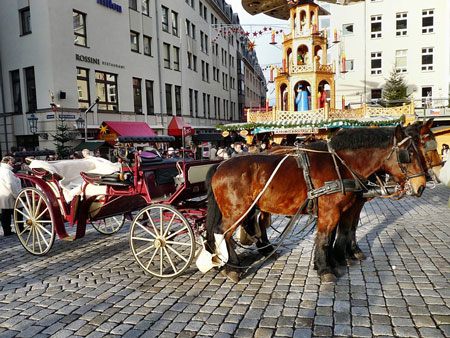 horse-drawn-carriage-450